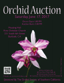 Color 2017 OSSC Orchid Auction Poster