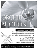 2013 Black and White OSSC Orchid Auction Poster
