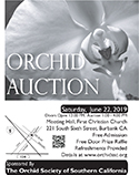 2019 Black and White OSSC Orchid Auction Poster